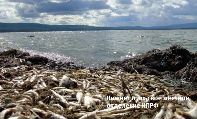 Кто и как губил Черноисточинский пруд